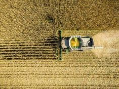 Growing Corn Is A Major Contributor To Air Pollution, Study Finds Corn Market, Feed Corn, Agricultural Practices, University Of Minnesota, Environmental Health, Greenhouse Gases, Plant Growth, Air Pollution, Carbon Footprint