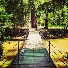 Swan Creek Metropark Toledo
