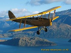 British Tiger Moth  trainer