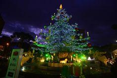 Decoração de Natal em Caxias do Sul.