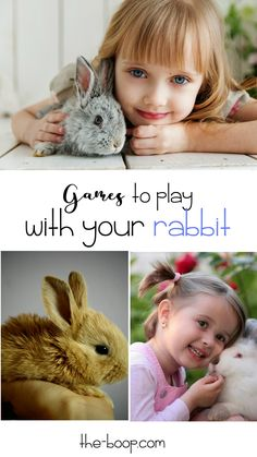 Rabbits come in all shapes, sizes, and, most importantly, personalities, but what they all have in common is that they all need plenty of exercise.  Playing games with your rabbit is a wonderful way to provide some of this much-needed activity. Kids love rabbit games so this can give your whole family plenty of bonding time and fun.  Give some of these rabbit games from the Boop a whirl!