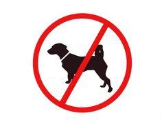 Esta imagen de función informativa indica que esta prohibido el paso a perros.