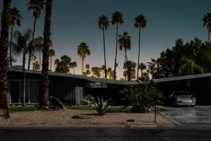 Midnight Modern by Tom Blachford