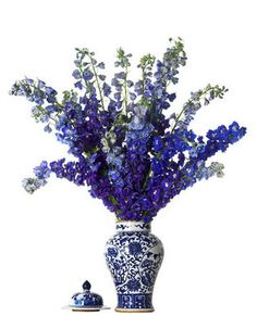 Delphiniums Look Fabulous In This Blue And White Ginger Jar It S A Very Dramatic Tip There An Abundance Of Flowers On Each Stem