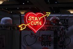 #staycute  xoxo