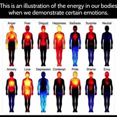 This is an illustration of the energy in our bodies when we demonstrate certain Anger Fear Disgusl Hªppiness Sadness Surprise Neulral Anxiety Love Deplession Conlempl Pride Shame WWWWWWW - iFunny :) Science Memes, Science Facts, Fun Facts, Different Emotions, Emotional Intelligence, Science And Nature, Our Body, Self Improvement, Jokes