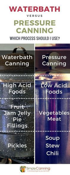 Water Bath Canner or a Pressure Canner? That is a common question ~ and a good one. The canning methods you choose are the most important factor in canning safety. Home Canning Recipes, Canning Tips, Pressure Canning Recipes, Canning Kitchen Ideas, Kitchen Hacks, Canning Food Preservation, Preserving Food, Preserving Tomatoes, Methods Of Food Preservation