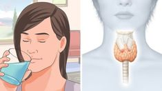 RiseEarth : How to Reset Your Thyroid to Burn Fat and Activate Your Metabolism