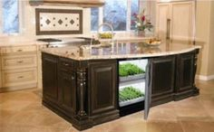 Must have in remodeled kitchen: Kitchen Cultivator Built In Hydroponic Garden. Easily fits into any custom cabinets. So excited about this appliance that will allow for year-round gardening!