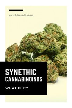 Synthetic Cannabinoids often referred to as synthetic or fake Marijuana consists of various man-made chemicals Crisis Intervention, Medical Conditions, Herbalism, Addiction, Herbal Medicine