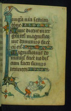 Incomplete Book of Hours Marginalia Walters Manuscript W.87 fol. 51r by Walters Art Museum Illuminated Manuscripts