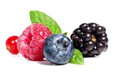 Il valore dei frutti di bosco Malvina Bonadio Laureata in Scienze e Tecnolgie Alimentari Consulente NATURHOUSE