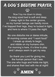 A dog's bedtime prayer I miss my deeply beloved dog, Baby, sooooo much!!