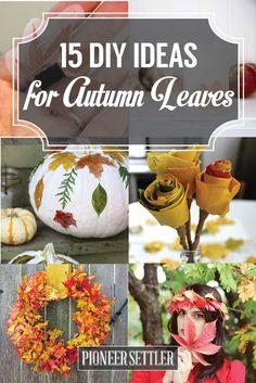 15 DIY Ideas for Autumn Leaves