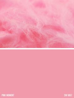 Sherwin-Williams paint color – Pink Moment (SW 6857)