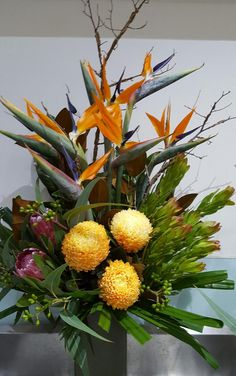 Mothers Day flower arrangements and flower baskets available for same day delivery anywhere in Australia. Order now! call us at: 0434271351 Special Flowers, Mothers Day Flowers, Love You Mum, Mothers Day Special, Enchanted Garden, Fresh Flowers, Flower Arrangements, Custom Design, Flower Baskets