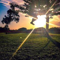 New heights can't be reached if you don't jump jump. What what!!! First landed jump on the #slackline super stoked!!! #sunrise #sunset #yogaonthebeach #slacklinebrasil #jump #silouette #grass #green #fitness #fitstagram #asana #freedom #freestyle #fremantle #freo #southbeach #organic #satorisurfer @barefoot_smiles #surf #beach #waves #slacklinesurfer by satori_surfer