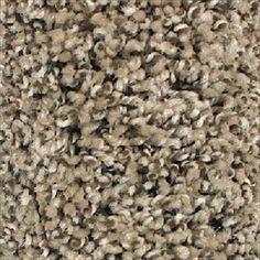 Showcase - Bliss By Beaulieu - Carpet - Mink  Living/Family/Bedroom carpet