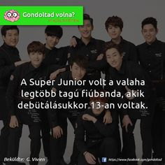 K-pop Super Junior, Lol, Entertaining