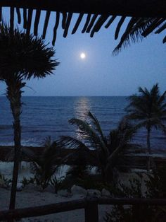 Tulum's Moonlight