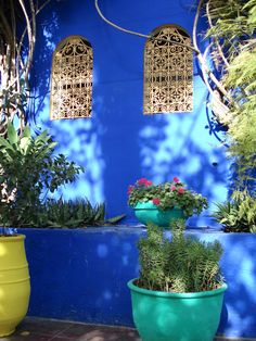 Les Jardins de Majorelle in Marakesh/Morocco. They were all renovated and created by Yves St-Laurent.