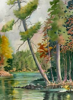 14Is. Lake - Leaning Pine by GilmoPix, via Flickr