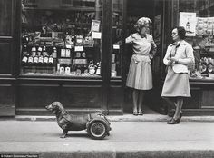 Ordinary: Much of #Doisneau's work focused on ordinary people going about their lives, such as this pair of women