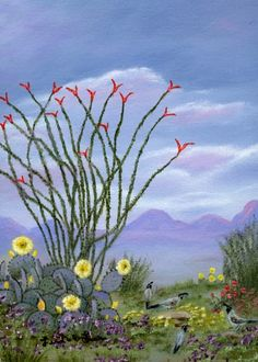 South West Desert Paintings | of Arizona, and gallery wrap style paintings