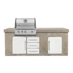 Napoleon Built-In LEX 485RB Gas Grill with four burners | LEX485RB