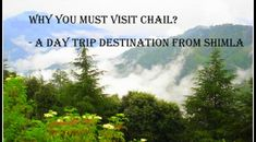 A quiet hill station barely 2 hours away from the capital of Himachal, Shimla, Chail is a picture-perfect mountain short getaway placed in the lap of nature. Popularly known as the summer capital o…