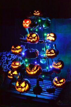 Mens Fantasy Halloween Fire Pumpkin Casual Sport Vest