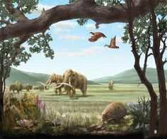 During the Pleistocene, North America had a climate similar to that of the savannas of eastern and southern Africa. - During the Pleistocene, North America had a climate similar to that of the savannas of eastern and southern Africa. Prehistoric World, Prehistoric Creatures, History Images, The Good Dinosaur, Weird Creatures, Wildlife Art, Science, Natural History, Mammals