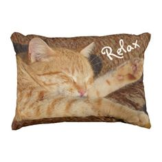 Relaxing Cat Outdoor Pillow
