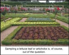 Villandry: The Most Beautiful Vegetable Garden in the World