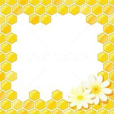 .favos de mel