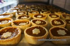 A Tray of Pearson's Berry Farm's Pumpkin Buttertarts Cooling in the Kitchen near Bowden, Alberta, Canada