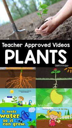 Videos About Plants