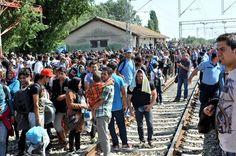 La Croatie, nouvelle route des migrants aux confins de l'espace Schengen