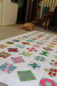 Nice colours for Farmer's Wife Quilt