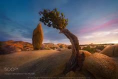 The Jumbo Rock by GreggB