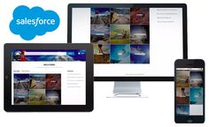 Salesforce Communities Consulting for Salesforce Employee Community, Salesforce Partner Community, and Salesforce Customer Community. Salesforce Portal's Your Way! | Penrod Software | Salesforce Partner & Microsoft CRM Partner plus Google Apps Reseller