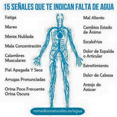 Tomar agua es important Health And Nutrition, Health And Wellness, Arthritis Hands, Joseph Pilates, Spiritual Messages, Health Matters, Natural Medicine, Herbalife, Health Coach