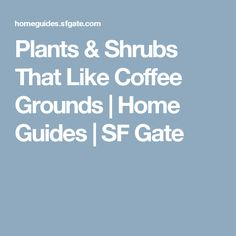 Plants & Shrubs That Like Coffee Grounds | Home Guides | SF Gate