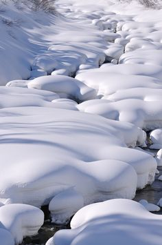 Nieve! Nieve!