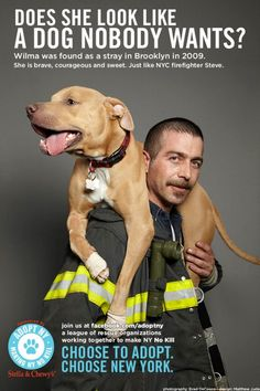 Pitbulls have a terrible stereotype. Many people claim that pitbulls are killers. The ad definitely presents a new way to look at pitbulls and how they are not as aggressive as most people think. Animal Shelter, Animal Rescue, Pet Shelter, I Love Dogs, Puppy Love, Mans Best Friend, Best Friends, Pitbulls, Pit Bull Love