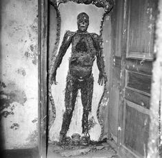 A skeleton at Capella Sansevero that was given an injection before death which somehow preserved all veins, arteries, and capillaries. Picture c. 1955