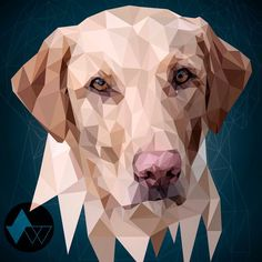 Finished Ruby portrait #graphicdesign #design #myart #illustrator #illustration #vector #noapp #watersillustration #pet #portrait #dog #dogsofinstagram #drawing #instadaily #instaart #thevectorproject #lowpoly #thedesigntip #dribbble #artfido