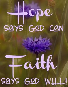 Hope says God can. Faith says God will! Discouragement: is where Hope is lost because we take our eyes of of God and focus on self.Faith keeps God's promises in our hearts and mind. Put on the armour of God each new day, Ephesians Prayer Quotes, Bible Verses Quotes, Bible Scriptures, Faith Quotes, Faith Sayings, Gratitude Quotes, Hope Quotes, Life Quotes Love, Quotes About God