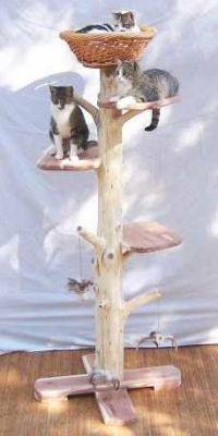 Five Foot Outdoor Cat Tree