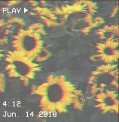 You loved Eleven but suddenly she disappeared but then a redhead moved to Hawkins from California and your heart takes you in a different direction. Flower Aesthetic, Aesthetic Images, Aesthetic Grunge, Aesthetic Vintage, Aesthetic Photo, Aesthetic Iphone Wallpaper, Aesthetic Wallpapers, Tumblr Wallpaper, Photo Wall Collage